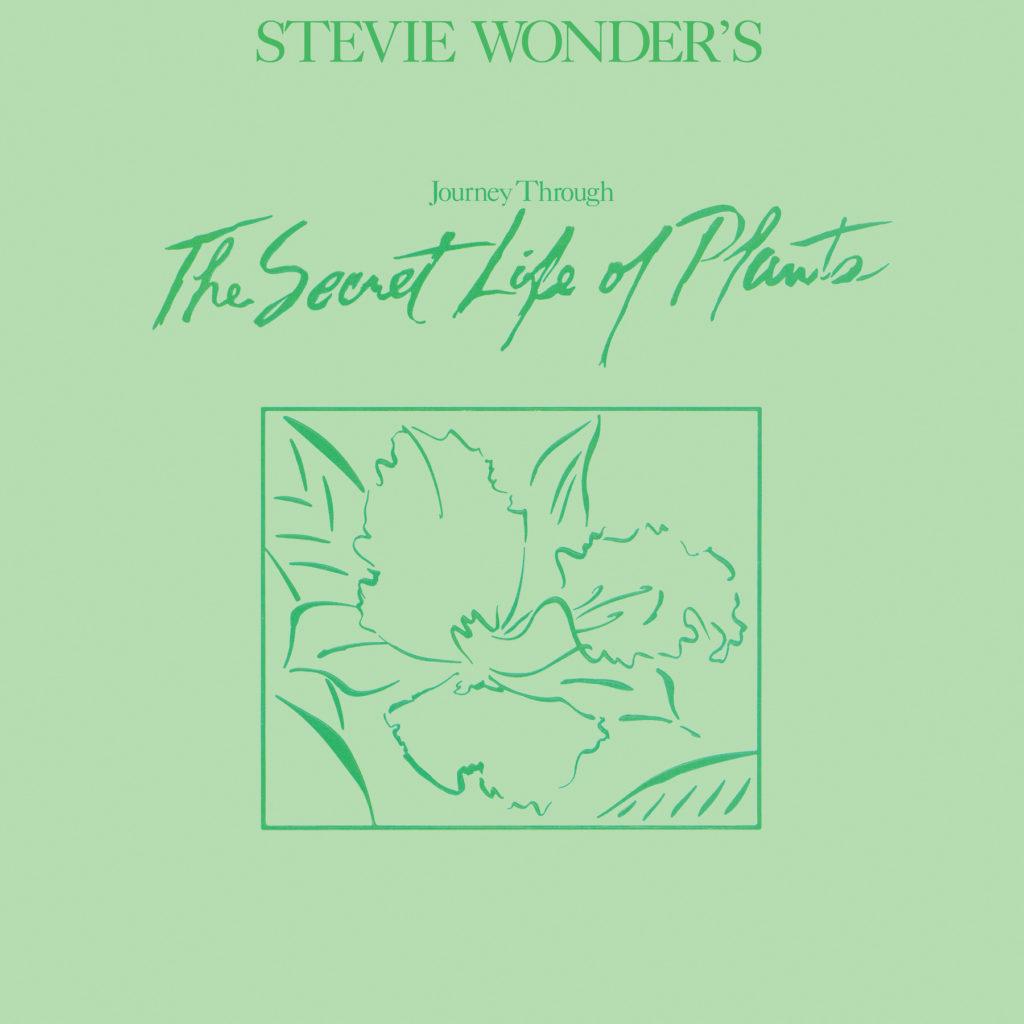 stevie_plants